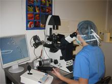 Tratamiento Inyección intracitoplasmática en CERAM - Centro de Reproduccion Asistida de Marbella. Clínicas de reproducción asistida, Donación de ovulos, Tratamientos de fertilidad